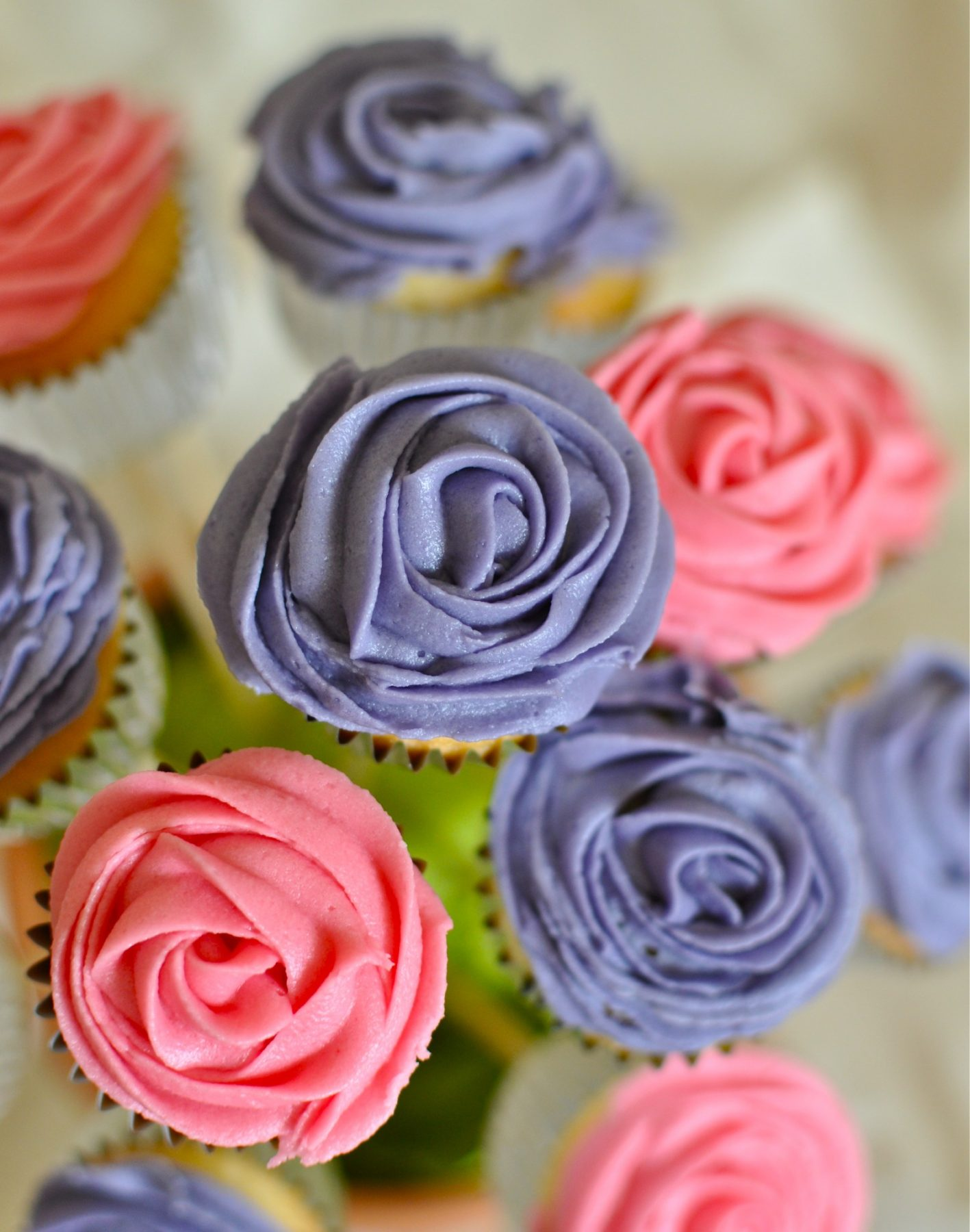 Cupcake flower pot