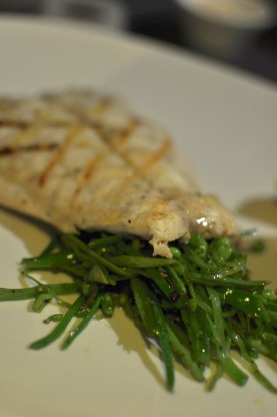Fresh fish of the day, lemon chive butter, seared shredded snow peas M/P